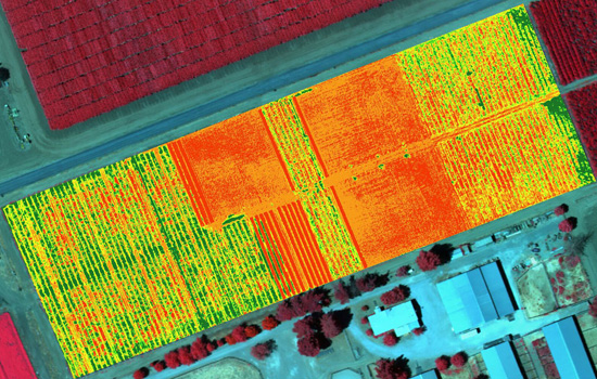 ndvi | iPhone Drone Imagery
